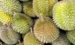 世界上最稀有的十种水果 你可能都没有听说过!