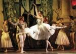 关于芭蕾舞舞者的十大趣事 芭蕾舞最初是男性的舞蹈