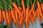十大健康蔬菜排行 世界十大健康蔬菜