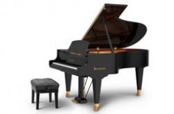 世界最受欢迎十大乐器 钢琴最让人沉醉