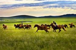 内蒙古十大旅游景点排名 全世界最美的草原就在这里