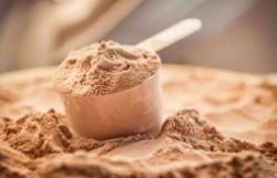 蛋白粉有哪些种类 分别都有哪些功效和作用