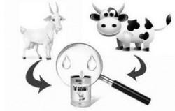 2020羊奶粉排行榜10强 羊奶粉哪个牌子好