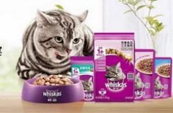 进口猫粮品牌排行榜 伟嘉猫粮最受青睐