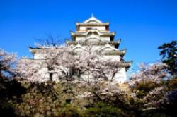 日本最大的岛屿 本州岛占国土总面积的60%