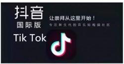 盘点十大TikTok网红-TikTok网红排行榜前十