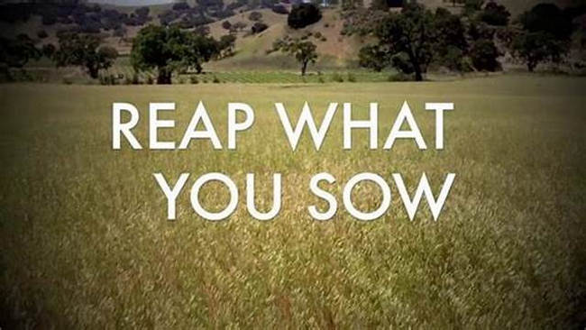 If you give, you must reap